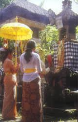 Making offerings at the family temple during Galangal the most holy day in the Balinese calender