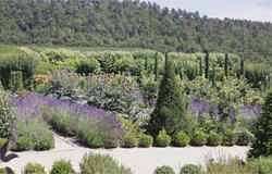 A magnificent traditional Provencale garden